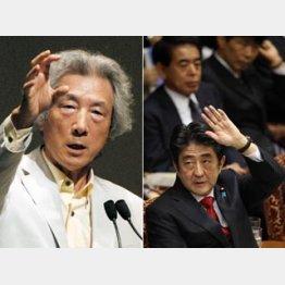 安倍首相はどう対応するのか/(C)日刊ゲンダイ