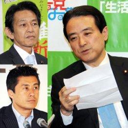 江田、松野(左上)、細野(同下)で勉強会/(C)日刊ゲンダイ
