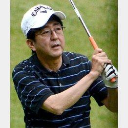 ゴルフもエンジョイ/(C)日刊ゲンダイ