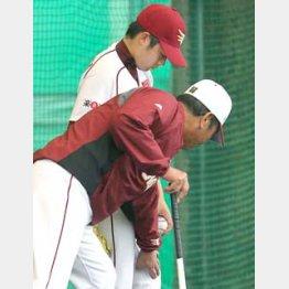 佐藤コーチの指導で…/(C)日刊ゲンダイ