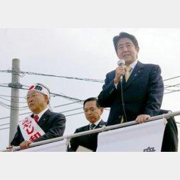 前回も自民は大苦戦/(C)日刊ゲンダイ