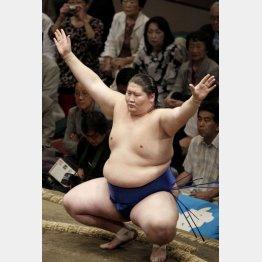 日本人力士は呆然と見つめるだけ/(C)日刊ゲンダイ