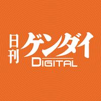 会見で満面のスマイル/(C)日刊ゲンダイ