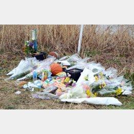 上村遼太くんの遺体発見現場は献花が絶えない