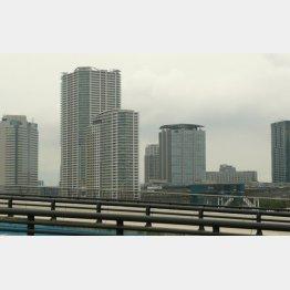 江東区豊洲のマンション群