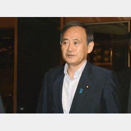 会見で写真を公表した菅官房長官