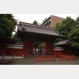 東京大学では推薦入試がスタート
