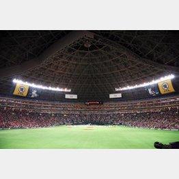 今季から「ホームランテラス」の観客席が設置されたヤフオクドーム