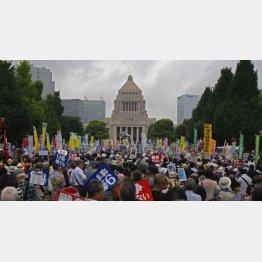 国会前のデモの様子(C)日刊ゲンダイ
