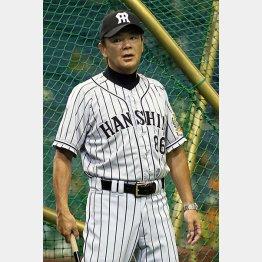 和田監督は今季限りで退任