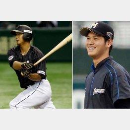 大谷(右)と中田翔にヤンキースも熱視線