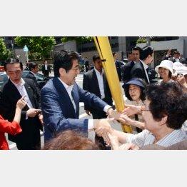 視察で老人ホームを訪れたときの安倍首相(C)日刊ゲンダイ