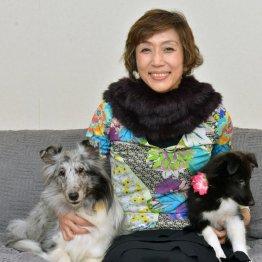 女優として活躍する山村美智さん