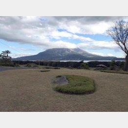 桜島を望む仙厳園