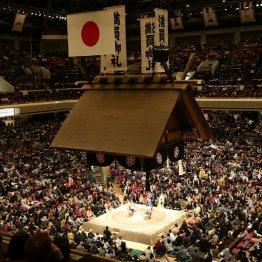 大相撲の解説は特にひどいと苦言が