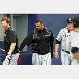 阪神はコーチまで助っ人(右はオマリーコーチ)