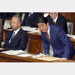 安倍首相(右)と甘利大臣