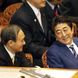 安倍首相(右)と菅官房長官