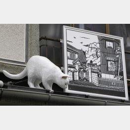 猫が小判を運んでくる
