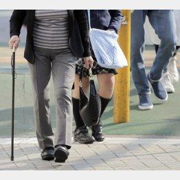 司法の世界では老人と働き盛りに違いがある