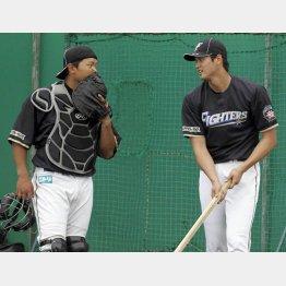 ブルペン投球後に捕手の大嶋と話をする大谷