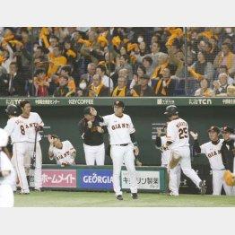 東京ドームには毎試合大観衆が…