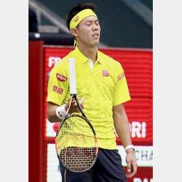 1月の全豪オープン準々決勝でもラケットを投げた