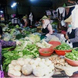 市場には新鮮な野菜がズラリ