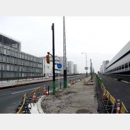 仲卸棟(右)と卸棟は国道315号で仕切られている(C)日刊ゲンダイ