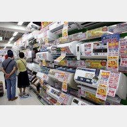 酷暑の夏には嬉しい結果が出た(C)日刊ゲンダイ