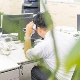 働き盛りに強い味方 注目成分「スルフォラファン」とは
