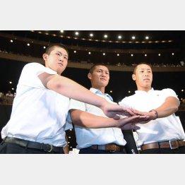 左から花咲徳栄・高橋昂也、履正社・寺島、横浜高校・藤平の「高校ビッグ3」