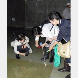 もう開場はムリ…(C)日本共産党都議団