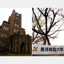 東京大学と慶應義塾大学