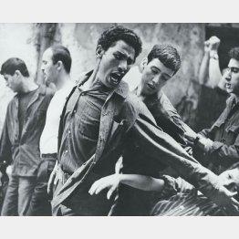 アルジュの戦い(1966年 ジッロ...