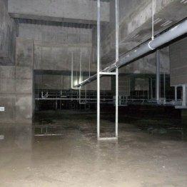 豊洲新市場の建物地下