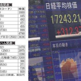 株式市場も盛り上がるか?