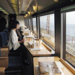 記念日に最適 南伊豆の海岸線を走るリゾート列車の車窓旅