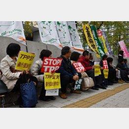 TPP対する反対は根強い