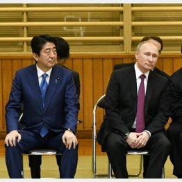 安倍首相とプーチン大統領