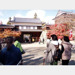 ポールを握って上田城へ